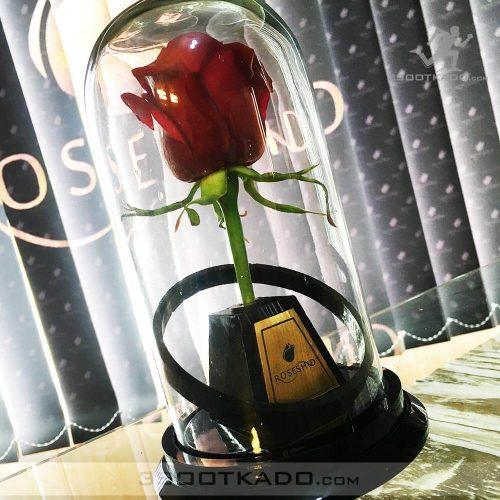 خرید گل دلبر