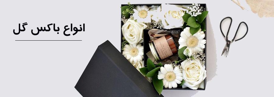 انواع باکس گل